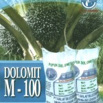 Distributor Dolomit di Medan
