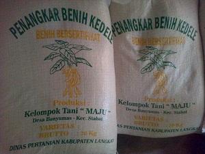 distributor benih kedelai di medan