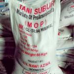Jual Pupuk NKCL (MOP) Tani Subur di Medan