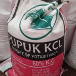 Jual Pupuk KCL di Medan