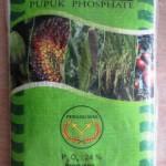 Distributor Pupuk Phosphate Grand Phosmag Cap Pedang Mas di Pekanbaru