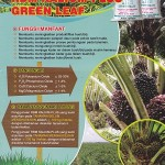 Jual Kalium Plus Green Leaf di Medan