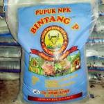 Distributor Pupuk NPK 16-16-16 Bintang P