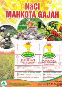 Pupuk NaCL Mahkota Gajah