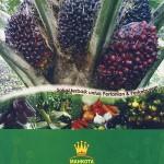 Supplier Pupuk Mahkota di Pekanbaru Riau