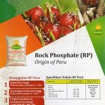Rock Phosphate (RP) Mahkota Origin of Peru