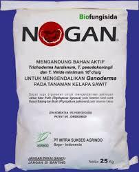 NOGAN (Biofungisida Anti Ganoderma/Penyakit Busuk Pangkal Batang)