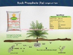 Rock Phosphate (RP) Peru