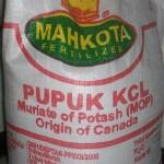 Distributor Pupuk KCL (MOP) di Medan