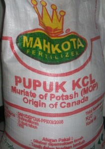 KCL Mahkota Origin Canada