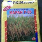 Jual Benih Padi Hibrida Mapan P-05 di Medan