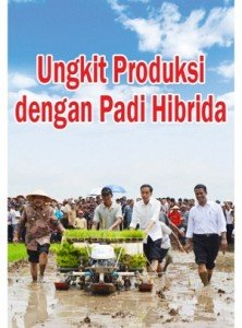 Penanaman Bibit Padi MAPAN P-05 Oleh Presiden Jokowi & Menteri Pertanian Amran Sulaiman