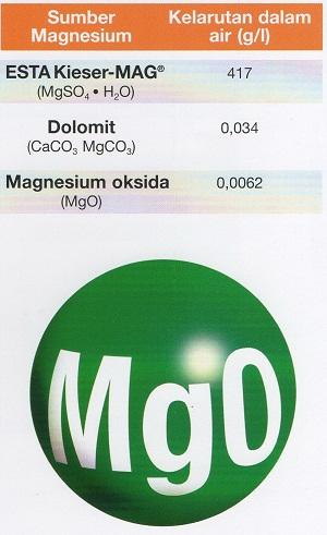 Sumber-sumber-magnesium