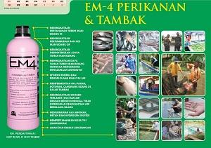 EM4 Untuk Ikan dan Tambak